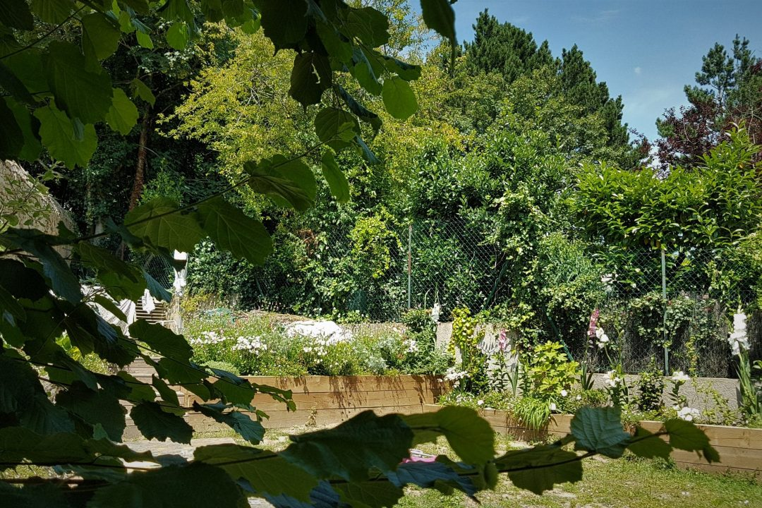 jardin des camelias-D&B (7)